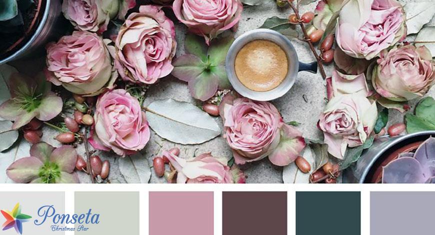 ألوان مستوحاة من الزهور