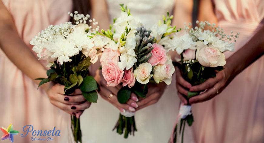 أنواع الزهور للحفلات